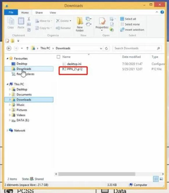 How-to-import-Porsche-PPN-License-for-PIWIS-Tester3-7